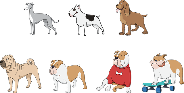 New information from April 27: The 5 breeds of dogs to avoid adopting